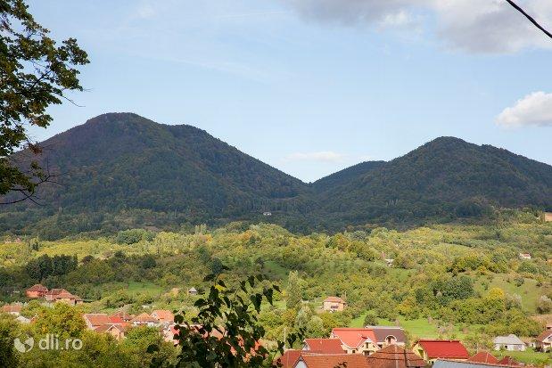panorama-cu-rezervatia-naturala-tinoavele-din-camarzana-judetul-satu-mare.jpg