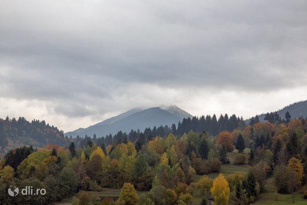 panorama-cu-varful-pietrosu-mare-judetul-maramures.jpg