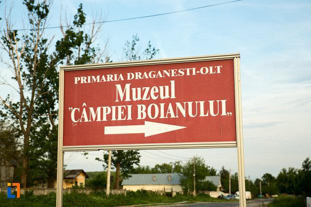 panou-cu-muzeul-campiei-boianului-din-draganesti-olt-judetul-olt.jpg