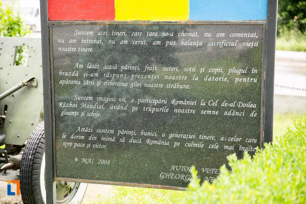 panou-langa-monumentul-eroilor-din-adjud-judetul-vrancea.jpg