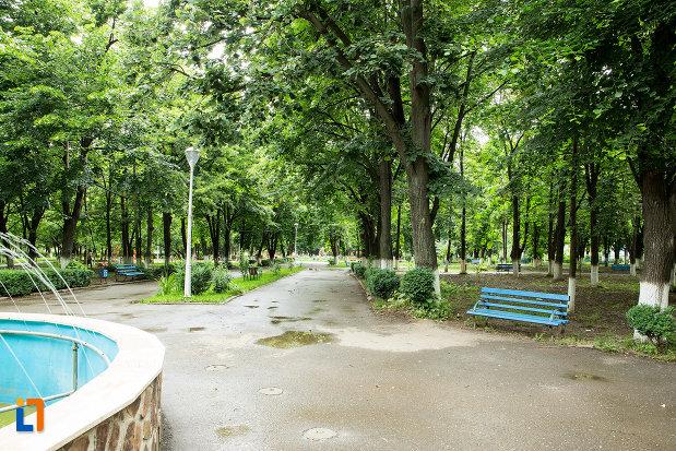 parc-din-orasul-adjud-judetul-vrancea.jpg