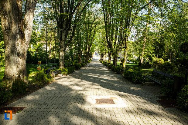 parcul-central-balnear-din-baile-govora-judetul-valcea-sir-de-copaci.jpg