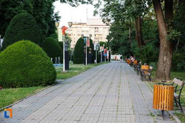 parcul-central-din-timisoara-judetul-timis-alee-cu-banci.jpg