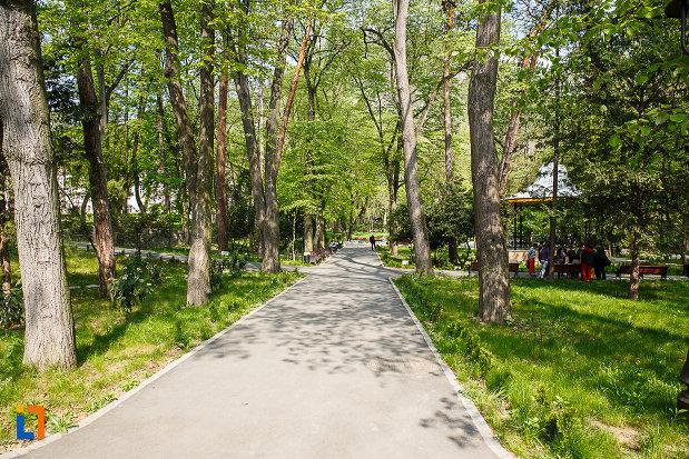 parcul-cetate-din-deva-judetul-hunedoara-imagine-cu-copacii-si-aleile-spatiului-verde.jpg