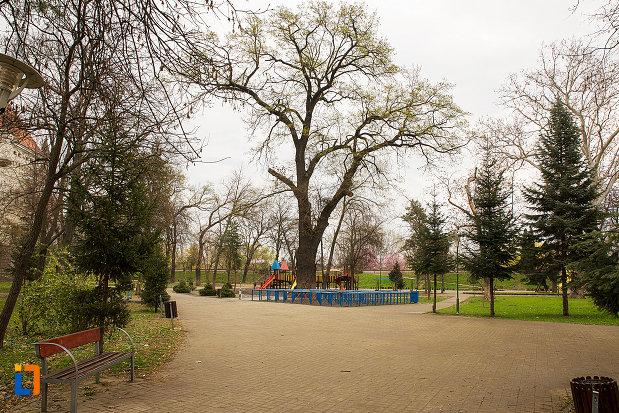 parcul-copiilor-din-arad-judetul-arad.jpg