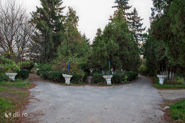 parcul-dendrologic-din-valea-lui-mihai-judetul-bihor.jpg