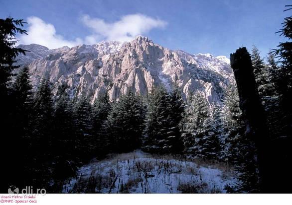 parcul-national-piatra-craiului.jpg