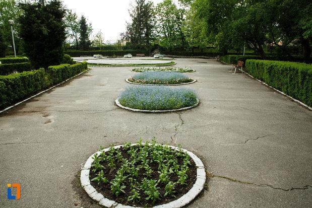 parcul-zavoi-din-ramnicu-valcea-judetul-valcea-alee-cu-flori.jpg