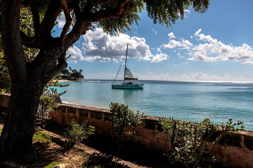 peisaj Barbados