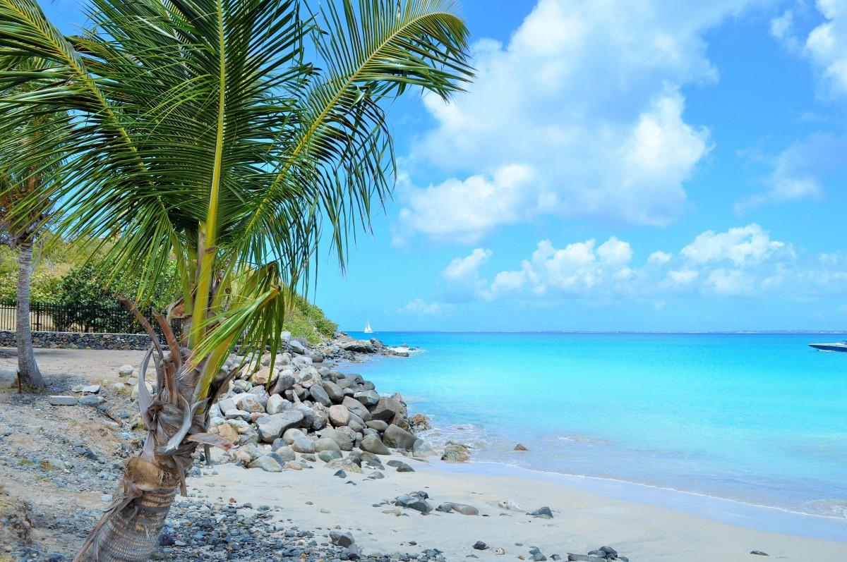 peisaj Martinique