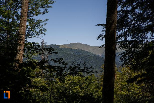 peisaj-montan-din-parcul-natural-bucegi-vazut-din-busteni-judetul-prahova.jpg