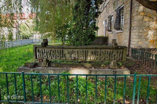 placuta-cu-muzeul-tarii-oasului-din-negresti-oas-judetul-satu-mare.jpg