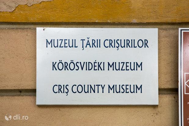 placuta-pe-palatul-episcopal-romano-catolic-azi-muzeul-tarii-crisurilor-din-oradea-judetul-bihor.jpg
