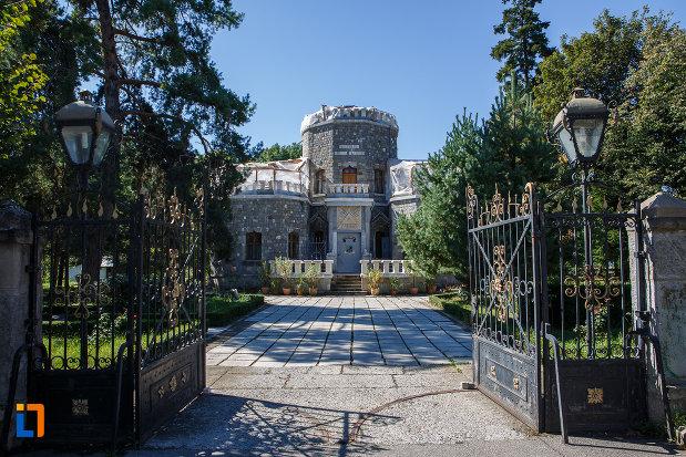 poarta-de-intrare-la-castelul-iulia-hasdeu-din-campina-judetul-prahova.jpg