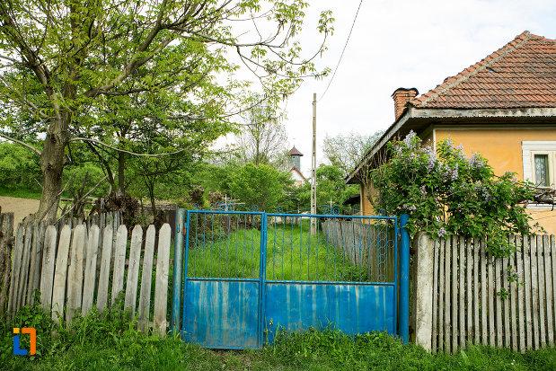 poarta-de-la-biserica-adormirea-maicii-domnului-din-lupoita-judetul-gorj.jpg