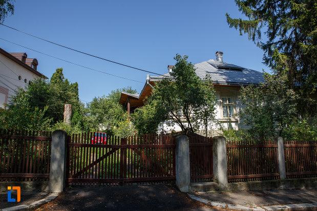poarta-si-gard-de-la-casa-folcloristului-simeon-florea-marian-din-suceava-judetul-suceava.jpg