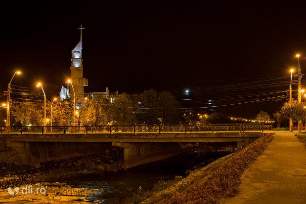 pod-peste-sasar-orasul-baia-mare-judetul-maramures.jpg