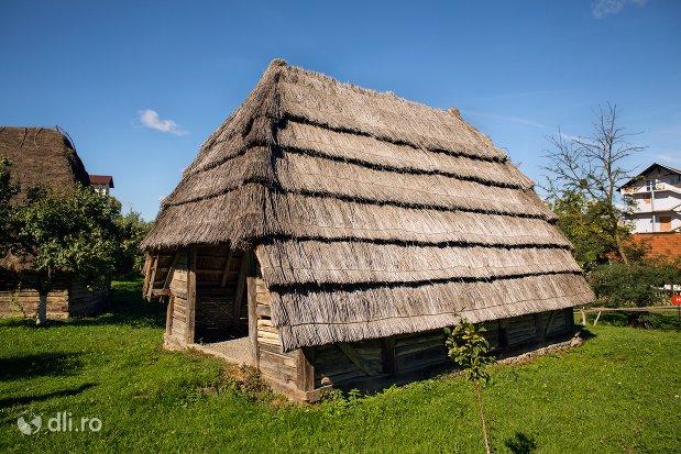 poiata-din-lemn-muzeul-satului-osenesc-din-negresti-oas-judetul-satu-mare.jpg