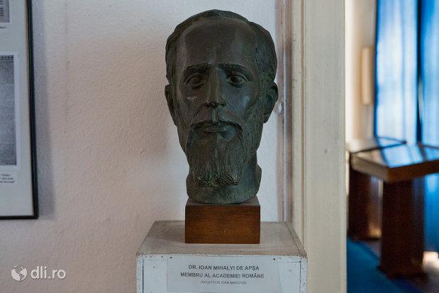 portret-din-casa-mihalyi-de-apsa-din-sighetu-marmatiei-judetul-maramures.jpg