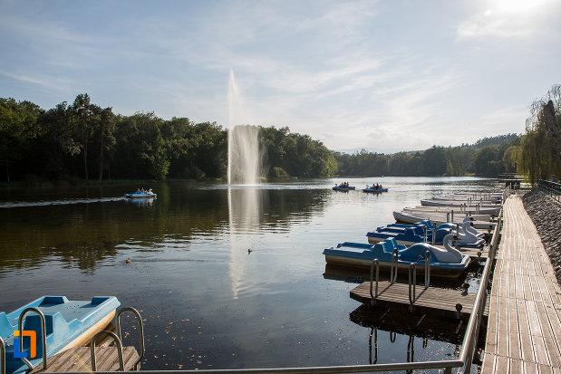 posibilitate-de-plimbare-cu-barca-pe-lac-gradina-zoologica-din-sibiu-judetul-sibiu.jpg