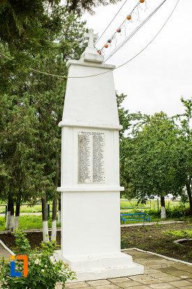 poza-cu-monumentul-eroilor-din-cel-de-al-ii-lea-razboi-mondial-din-beresti.jpg