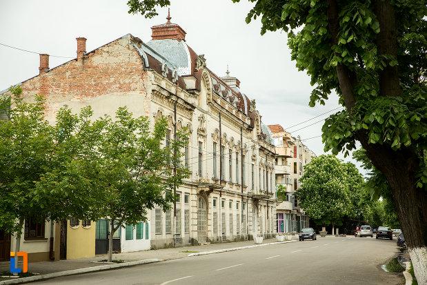 poza-cu-palatul-cosma-constantinescu-casa-de-cultura-si-muzeul-de-arheologie-si-etnografie-judetul-olt.jpg