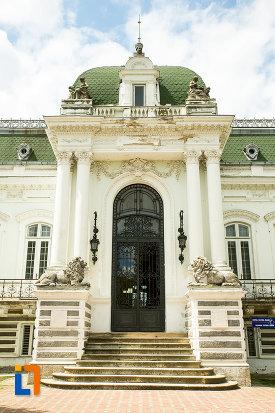 prim-plan-cu-intrarea-in-muzeul-de-arta-si-arta-populara-palatul-marincu-din-calafat-judetul-dolj.jpg