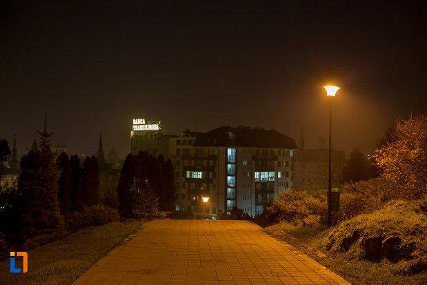 priveliste-nocturna-din-parcul-cetatuia-din-cluj-napoca-judetul-cluj.jpg