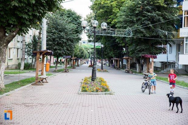 promenada-din-orasul-saveni-judetul-botosani.jpg