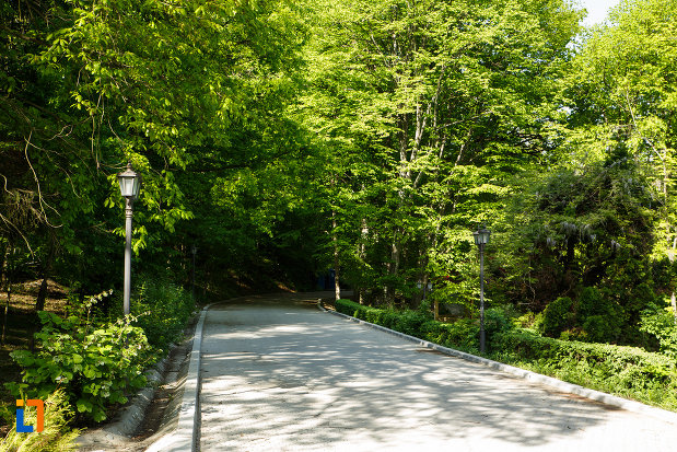 promenada-traseul-inimilor-din-baile-govora-judetul-valcea-trecand-printre-copaci.jpg