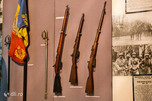 pusca-expusa-in-muzeul-militar-din-oradea-judetul-bihor.jpg