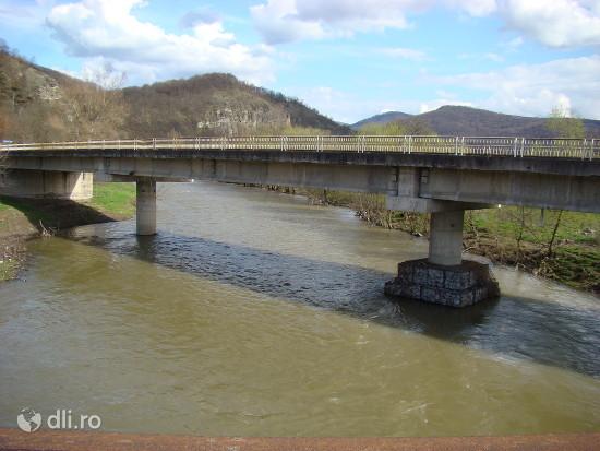 rezervatia-naturala-baltele-gurahont-podul-rutier-peste-crisul-alb.jpg