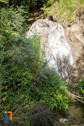 roca-salina-aflata-langa-lacul-ursu-din-sovata-judetul-mures.jpg