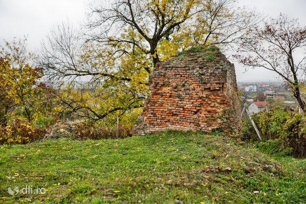 ruine-de-la-cetatea-din-ardud-judetul-satu-mare.jpg