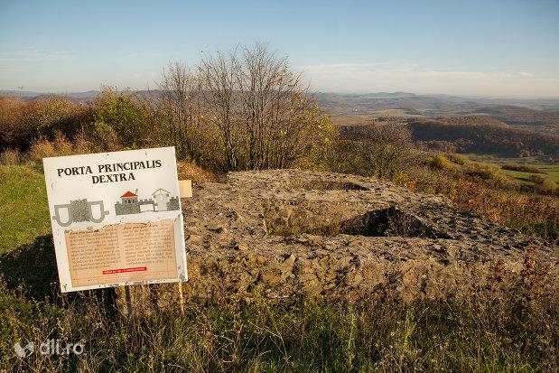 ruine-poarta-principala-de-la-castrul-roman-porolissum-din-moigrad-judetul-salaj.jpg