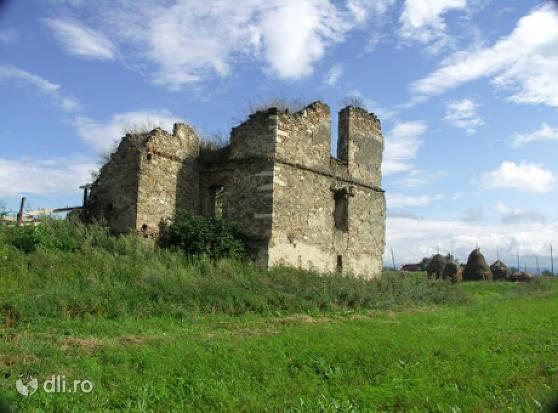ruinele-castelului-martinuzzi.jpg