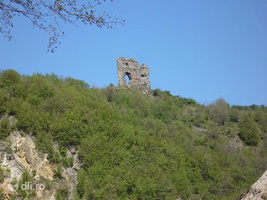 ruinele-cetatii-de-la-mehadia.jpg