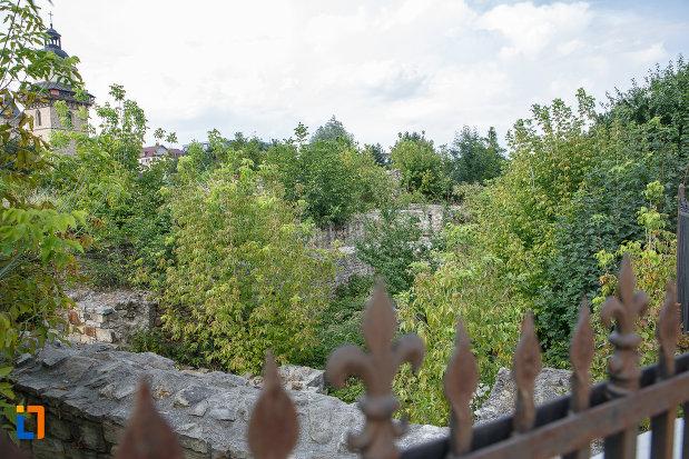 ruinele-palatului-domnesc-din-suceava-judetul-suceava.jpg