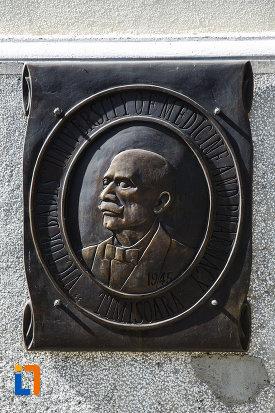 sculptura-in-relief-aflata-la-universitatea-de-medicina-si-farmacie-victor-babes-din-timisoara-judetul-timis.jpg