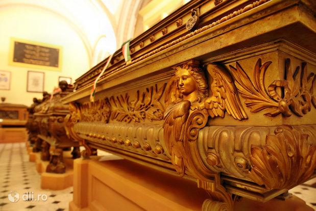 sicriu-ornat-din-cripta-familiei-karolyi-de-la-manastirea-franciscana-sf-anton-din-capleni-judetul-satu-mare-2.jpg