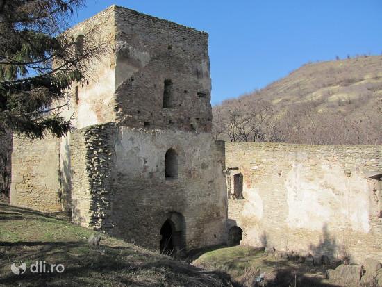 situl-arheologic-de-pe-dealul-catalina.jpg