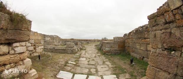 situl-arheologic-histria.jpg
