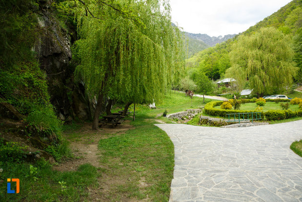 spatiu-verde-aflat-la-manastirea-turnu-din-pausa-judetul-valcea.jpg
