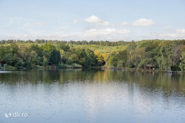 spatiu-verde-langa-lacul-mujdeni-judetul-satu-mare.jpg