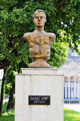 statuia-dariu-pop-satu-mare-de-aproape.jpg