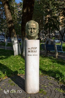 statuia-lui-pop-mihai-din-negresti-oas.jpg
