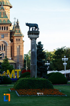 statuia-lupoaica-lupa-capitolina-din-timisoara-judetul-timis.jpg