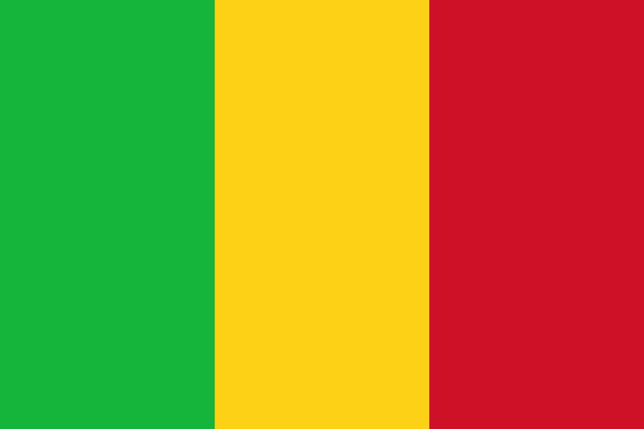 steag Mali