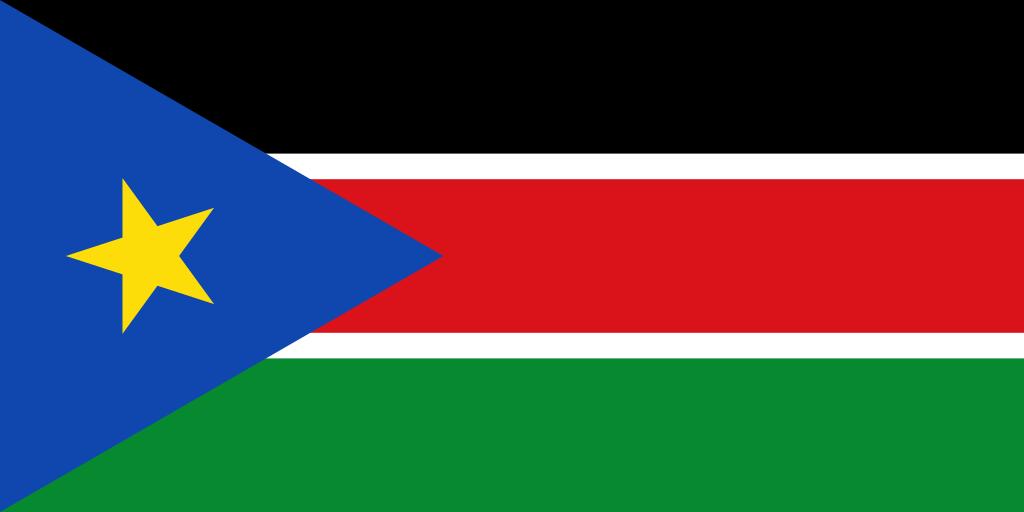 steag Sudanul de Sud