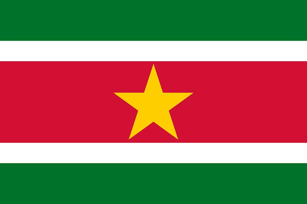 steag Suriname